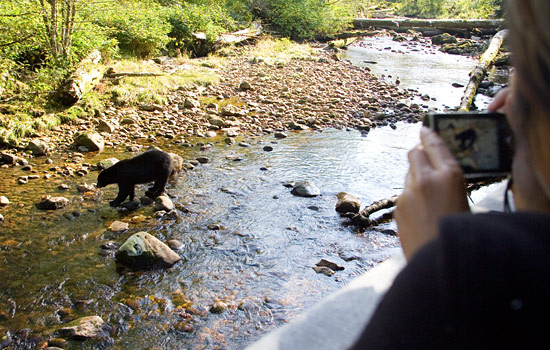 Meet some local wildlife on your shore excursions.