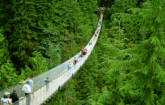 Starting in Vancouver you are so close to the wilderness on a tour of the Capilano Suspension Bridge.