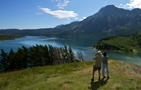 Start in Southern Alberta's Waterton Lakes National Park with diverse vistas, wildlife and ecosystems.