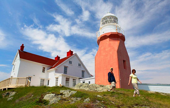 Drive up to Twillingate to see picturesque coastlines.